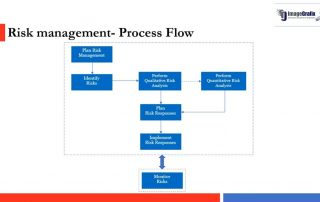Risk Management Using Primavera